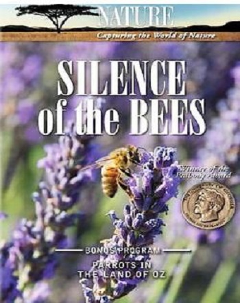 دانلود رایگان مستند زندگی زنبورها (Silence of the Bees)
