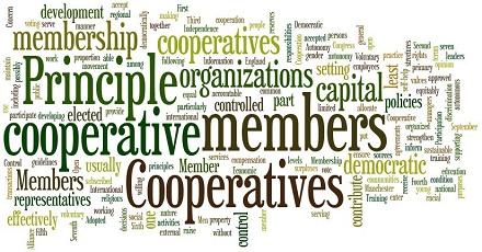 حسابداری شرکتهای تعاونی PDF