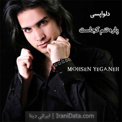 دانلود آهنگ دلواپسی محسن یگانه - نعره های بی امونم گوش آسمونو کر کرد