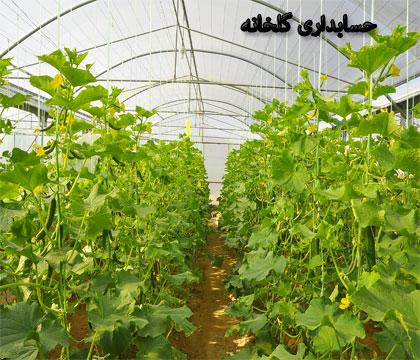 حسابداری محصولات گلخانه ای