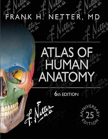 دانلود رایگان ویرایش ششم کتاب اطلس آناتومی انسان نتر
